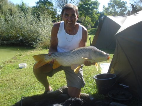 long-common-carp-from-smallwater-lakes-in-france